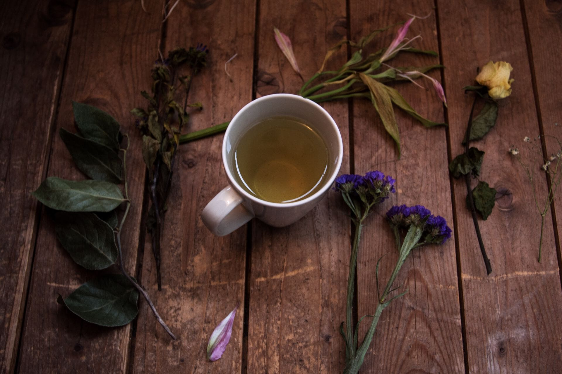 &Sister collaborator & herbal-healing wisdom-keeper Kitty Campion shares her detox tea recipe